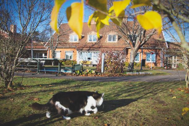 Sorby i Munktorp - Kpings kommun